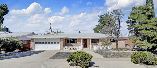 8509 Parkland Drive, El Paso, TX 79925 (MLS #835242) :: Jackie Stevens Real Estate Group brokered by eXp Realty