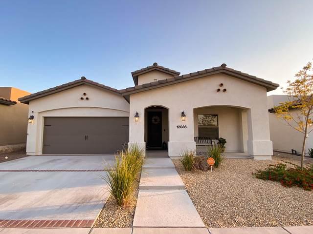 12036 Silver Crown Road, Horizon City, TX 79928 (MLS #835268) :: Jackie Stevens Real Estate Group brokered by eXp Realty