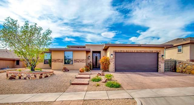 7339 Brays Landing Drive, El Paso, TX 79911 (MLS #835333) :: Jackie Stevens Real Estate Group brokered by eXp Realty