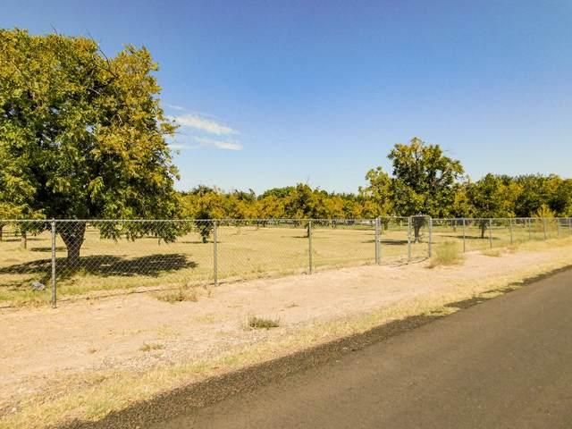 121 La Nell Drive, Canutillo, TX 79835 (MLS #835352) :: The Purple House Real Estate Group