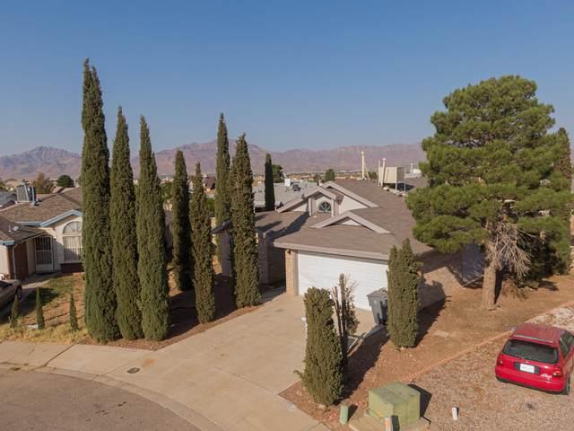6701 Carat Court, El Paso, TX 79924 (MLS #835405) :: Mario Ayala Real Estate Group