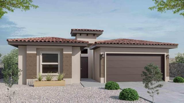 955 Brudenal Place, El Paso, TX 79928 (MLS #835426) :: Jackie Stevens Real Estate Group brokered by eXp Realty