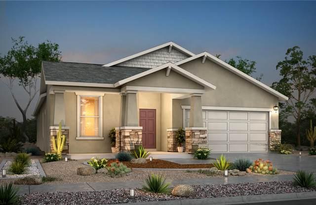 12349 Desert Vista, El Paso, TX 79938 (MLS #835467) :: Jackie Stevens Real Estate Group brokered by eXp Realty