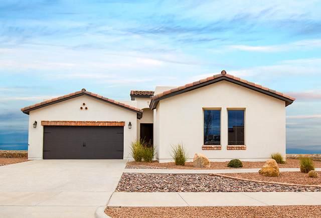 1725 Bull Ring Street, El Paso, TX 79938 (MLS #835529) :: Preferred Closing Specialists