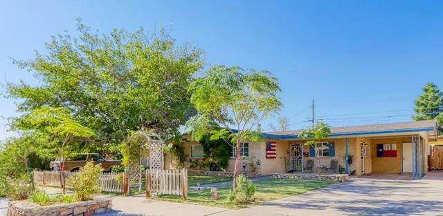 424 Christopher Avenue, El Paso, TX 79912 (MLS #835637) :: Jackie Stevens Real Estate Group brokered by eXp Realty