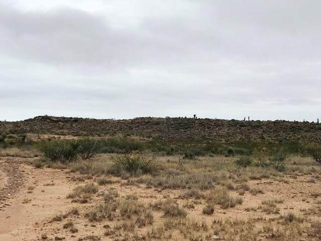TBD 46 Sec 30 Psl #434 Lot 16, Unincorporated, TX 99999 (MLS #835638) :: Jackie Stevens Real Estate Group brokered by eXp Realty
