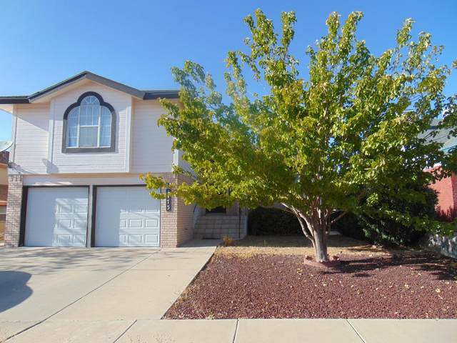 1473 Plaza Roja Court, El Paso, TX 79912 (MLS #835674) :: Jackie Stevens Real Estate Group brokered by eXp Realty
