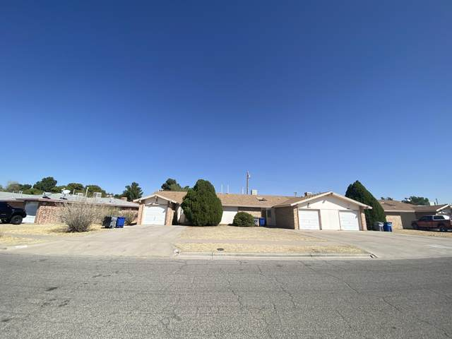 2849 Anise Drive, El Paso, TX 79936 (MLS #835702) :: The Purple House Real Estate Group