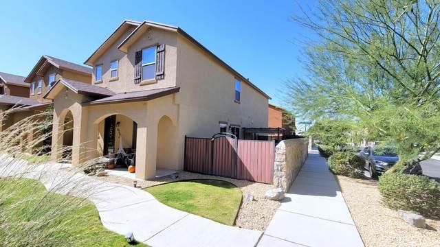 6700 Red Canyon Sage Lane, El Paso, TX 79912 (MLS #835783) :: The Matt Rice Group