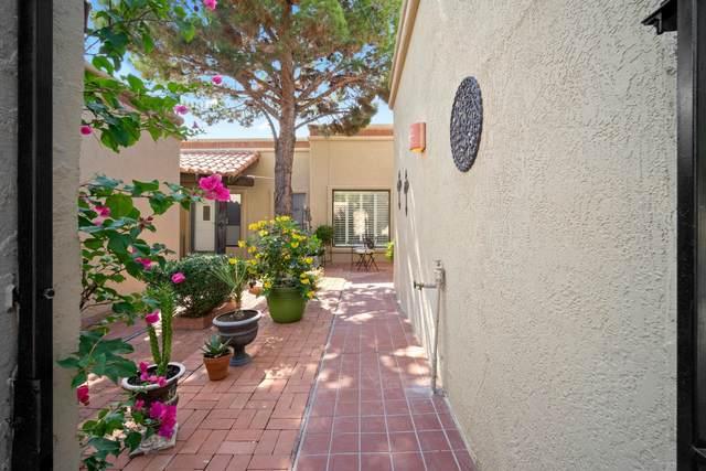11252 Enid Wilson Lane, El Paso, TX 79936 (MLS #835819) :: Mario Ayala Real Estate Group