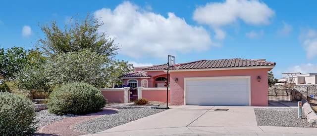 700 Lauren St., Sunland Park, NM 88063 (MLS #835824) :: Mario Ayala Real Estate Group