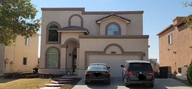 313 Warren Belin Drive, Horizon City, TX 79928 (MLS #835843) :: Preferred Closing Specialists