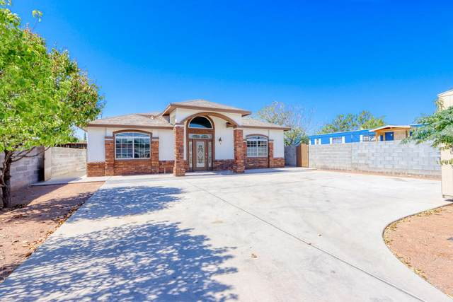 14621 Achim Drive, Horizon City, TX 79928 (MLS #835855) :: Jackie Stevens Real Estate Group brokered by eXp Realty