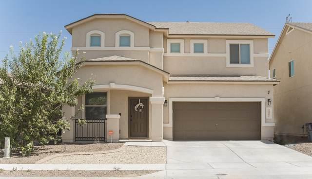 3236 David Palacio Drive, El Paso, TX 79938 (MLS #835859) :: Jackie Stevens Real Estate Group brokered by eXp Realty