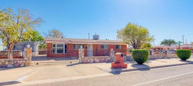 10232 Alcan Street, El Paso, TX 79924 (MLS #835879) :: The Matt Rice Group