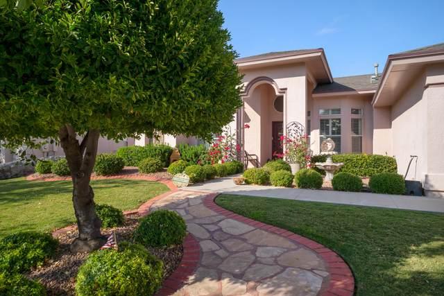 1237 Desert Canyon Drive, El Paso, TX 79912 (MLS #835888) :: Mario Ayala Real Estate Group
