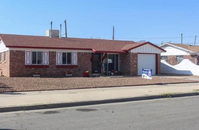 10237 Curlew Ln Lane, El Paso, TX 79924 (MLS #835936) :: Jackie Stevens Real Estate Group brokered by eXp Realty