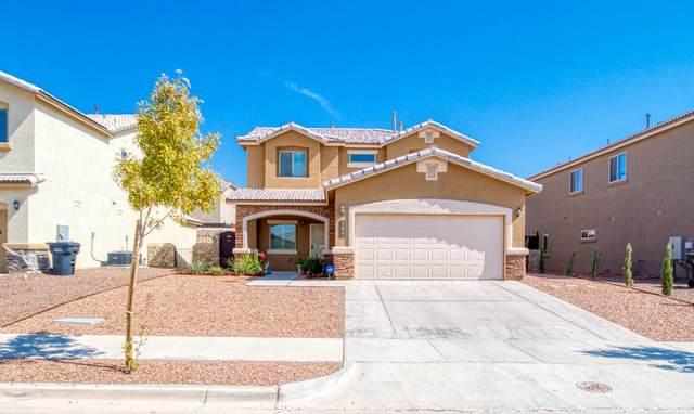 784 Pixton Road, El Paso, TX 79928 (MLS #835941) :: Mario Ayala Real Estate Group