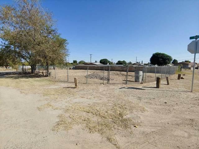 754 Delilah Avenue, Socorro, TX 79927 (MLS #835971) :: The Matt Rice Group
