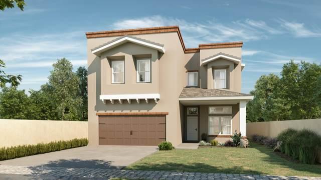 14849 William Meshel, El Paso, TX 79938 (MLS #835978) :: Jackie Stevens Real Estate Group brokered by eXp Realty