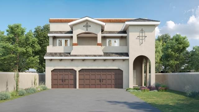 14845 William Meshel, El Paso, TX 79938 (MLS #835985) :: Jackie Stevens Real Estate Group brokered by eXp Realty