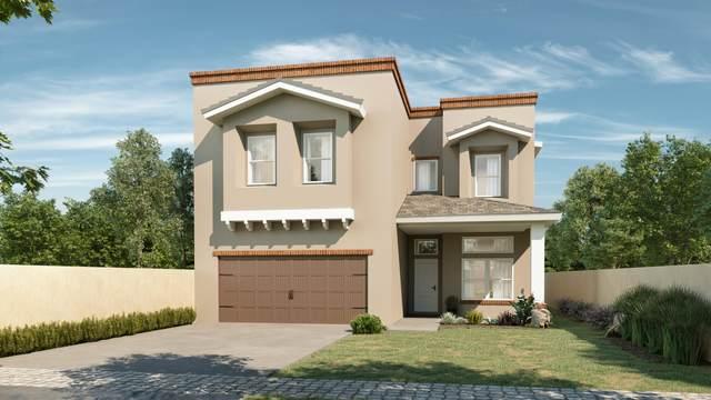 14833 William Meshel, El Paso, TX 79938 (MLS #835993) :: Mario Ayala Real Estate Group