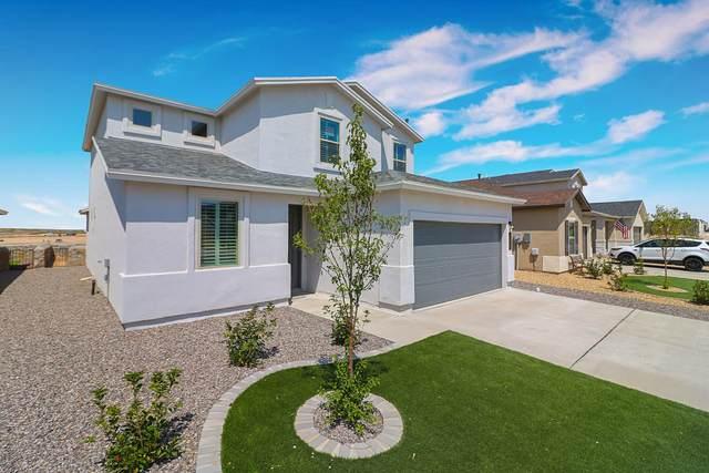 12257 Desert Vista, El Paso, TX 79938 (MLS #836013) :: Jackie Stevens Real Estate Group brokered by eXp Realty