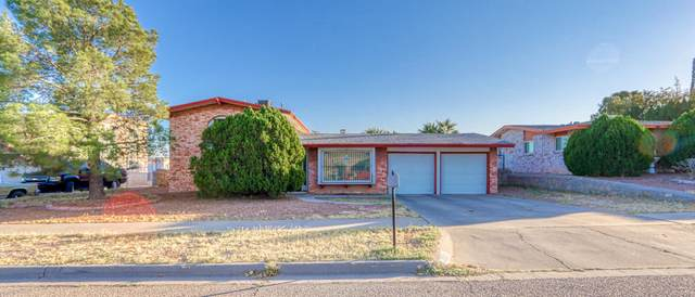 10692 Coralstone Drive, El Paso, TX 79935 (MLS #836014) :: Jackie Stevens Real Estate Group brokered by eXp Realty