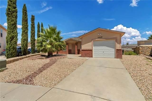 12559 Tierra Leon Way, El Paso, TX 79938 (MLS #836020) :: Jackie Stevens Real Estate Group brokered by eXp Realty