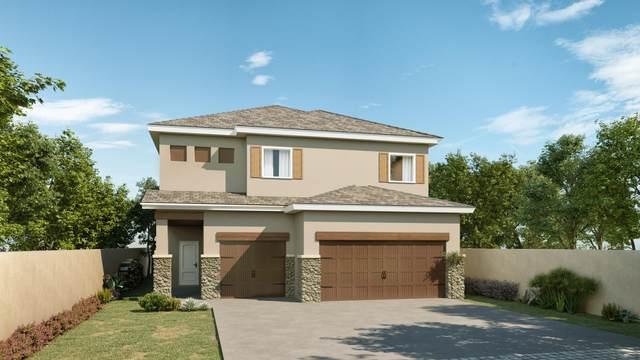 14836 Tierra Fortaleza, El Paso, TX 79938 (MLS #836027) :: Jackie Stevens Real Estate Group brokered by eXp Realty