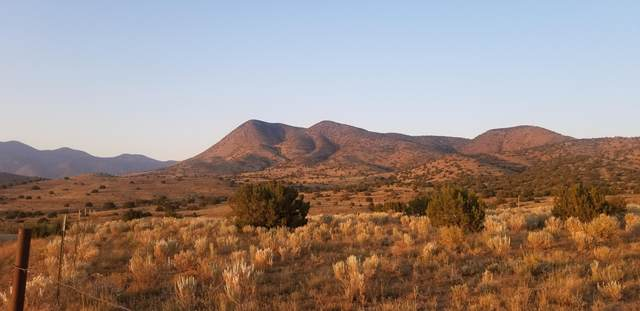 000 Longhorn Loop, Unincorporated, NM 99999 (MLS #836037) :: Summus Realty