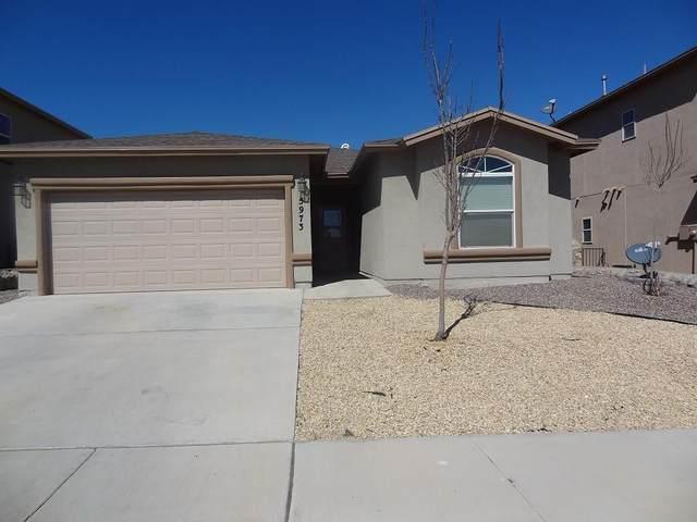 5973 Redstone Rim Drive, El Paso, TX 79934 (MLS #836044) :: Preferred Closing Specialists