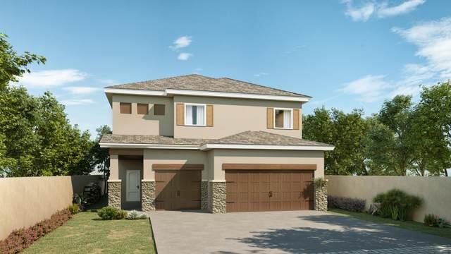 14849 Sam Garcia, El Paso, TX 79938 (MLS #836051) :: Jackie Stevens Real Estate Group brokered by eXp Realty