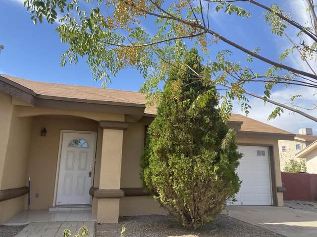 3621 Blue Palm Place, El Paso, TX 79936 (MLS #836101) :: Preferred Closing Specialists