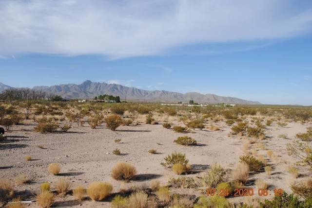 155 County Road A074, Chaparral, NM 88081 (MLS #836114) :: The Purple House Real Estate Group
