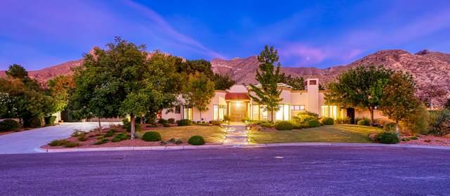 6008 Torrey Pines Drive, El Paso, TX 79912 (MLS #836134) :: The Purple House Real Estate Group