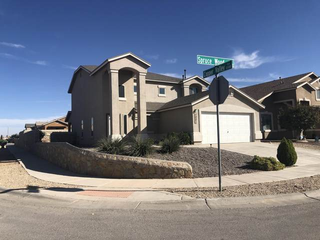 7001 Spruce Wood Court, El Paso, TX 79934 (MLS #836158) :: The Purple House Real Estate Group