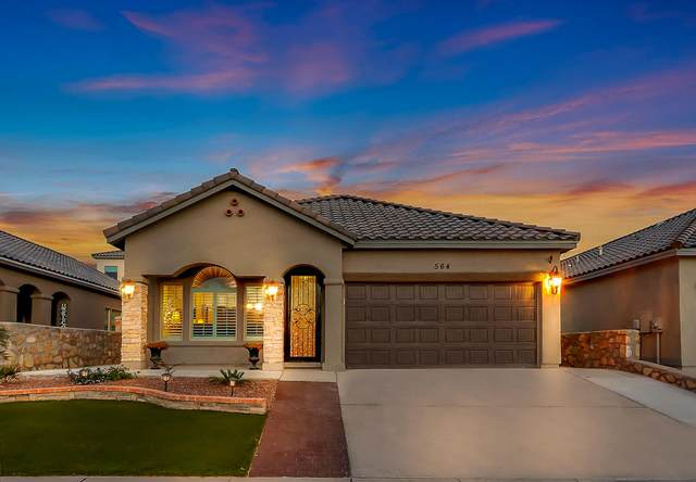 564 Oilfield Dr. Drive, El Paso, TX 79928 (MLS #836224) :: The Purple House Real Estate Group