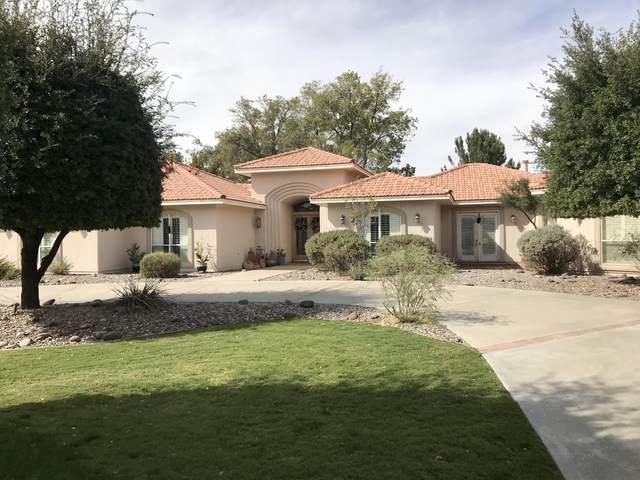915 Vereda Del Valle Avenue, El Paso, TX 79932 (MLS #836236) :: The Purple House Real Estate Group