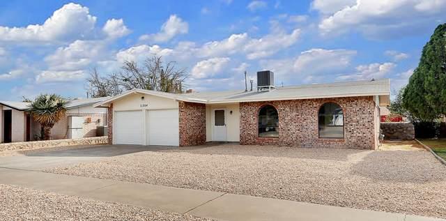 11204 Shoreline Drive, El Paso, TX 79936 (MLS #836246) :: The Purple House Real Estate Group