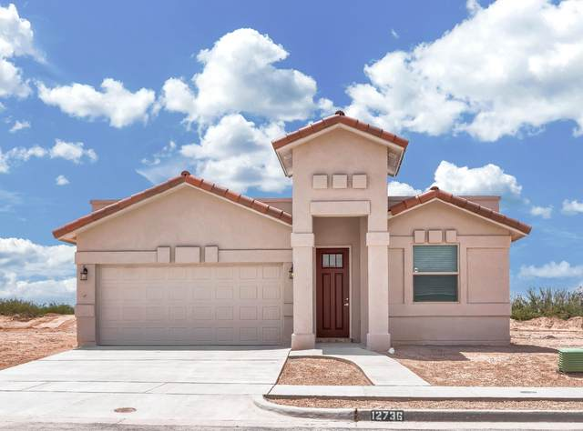 4552 Marisabel Azcarate, El Paso, TX 79938 (MLS #836369) :: The Purple House Real Estate Group