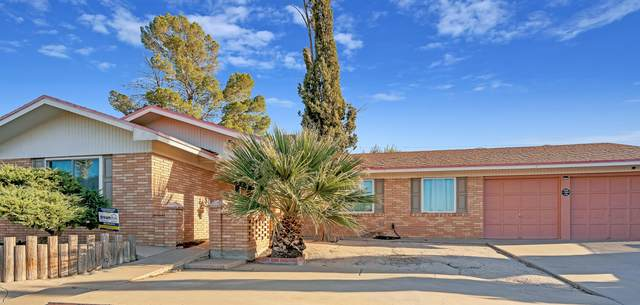 10212 Montwood Drive, El Paso, TX 79925 (MLS #836551) :: The Purple House Real Estate Group