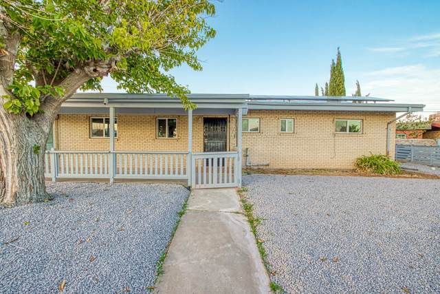 5211 Wally Drive, El Paso, TX 79924 (MLS #836689) :: The Purple House Real Estate Group