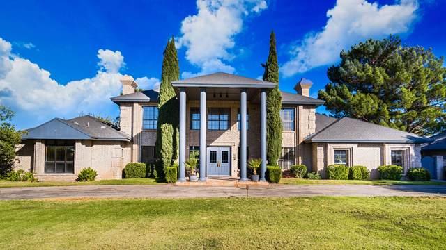 18 Cielo Dorado Drive, Anthony, NM 88021 (MLS #836841) :: The Purple House Real Estate Group