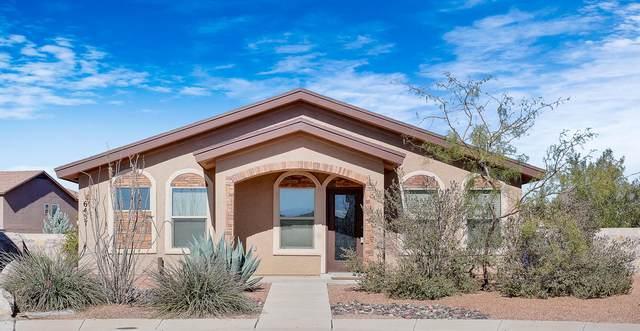 6437 Sara Beth Place, El Paso, TX 79932 (MLS #836871) :: The Matt Rice Group
