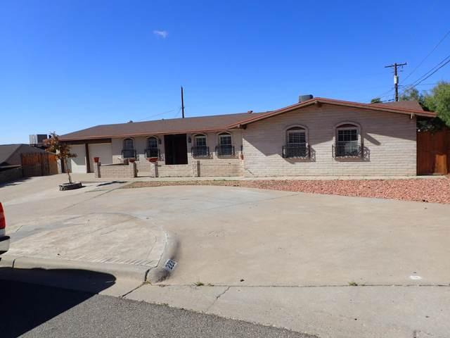 223 Vista Del Rey Drive, El Paso, TX 79912 (MLS #836978) :: The Purple House Real Estate Group