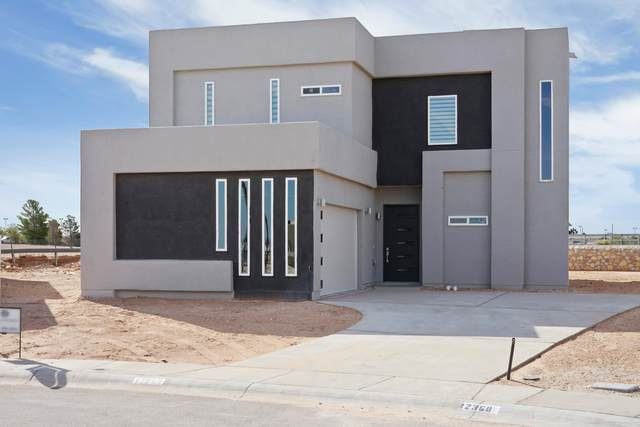 12341 Desert Pine Avenue, El Paso, TX 79938 (MLS #836994) :: The Purple House Real Estate Group