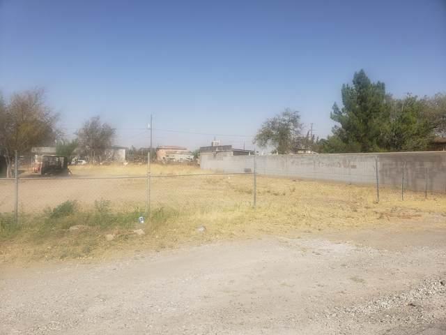 437 Bandolina Drive, Socorro, TX 79927 (MLS #837052) :: The Matt Rice Group