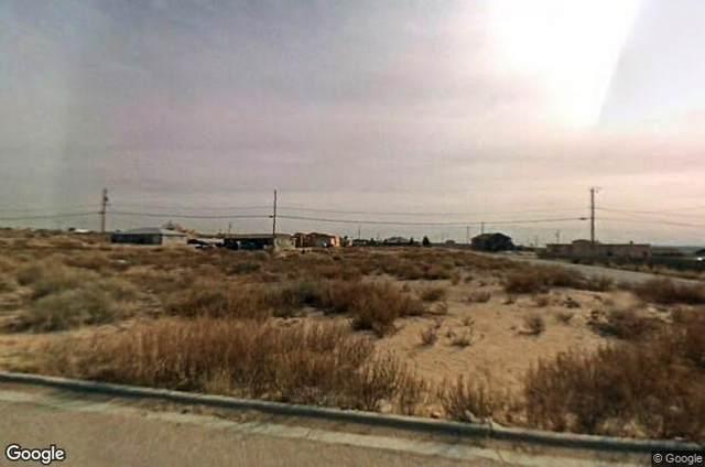 1640 Shaftsbury, Clint, TX 79836 (MLS #837120) :: Jackie Stevens Real Estate Group brokered by eXp Realty