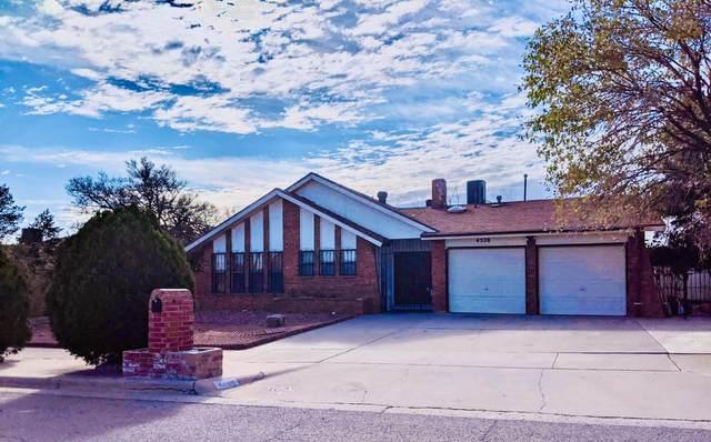 4528 Rl Shoemaker Drive, El Paso, TX 79924 (MLS #837187) :: Preferred Closing Specialists